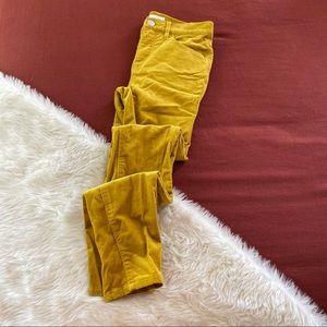 Loft high waist skinny golden corduroy sz.24/00